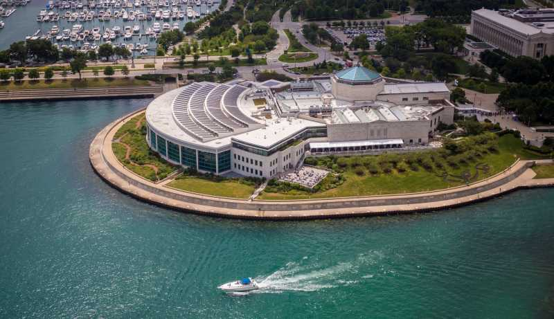 Suburban Tours recommends The Shedd Aquarium as a Chicago must do